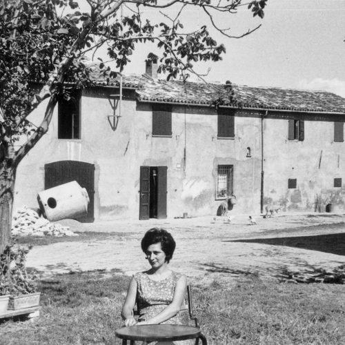 Storia Azienda Agricola Balducci